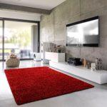 Shaggy-Teppich | Flauschiger Hochflor fürs Wohnzimmer, Schlafzimmer oder Kinderzimmer | einfarbig, schadstoffgeprüft, allergikergeeignet in Farbe: Rot; Größe: 40 x 60 cm