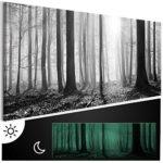 murando - Leinwand Bilder nachtleuchtend 120x40 cm - Tag & Nacht Wandbilder – Premium – Bilder 3D nachleuchtende Farben - Kunstdruck - Vlies Leinwand XXL - Fertig Aufgespannt – Waldlandschaft Natur Wald Panorama Baum schwarz-weiß grau c-B-0235-ag-a